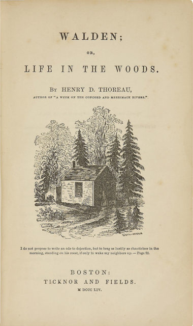 Original title page of Walden featuring a picture drawn by Thoreau's sister Sophia